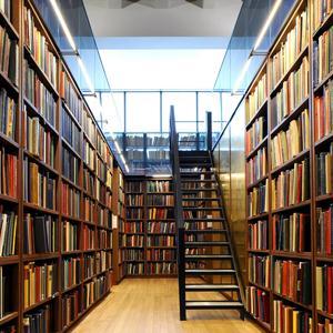 Библиотеки Чернышевска